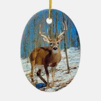 Reindeer Photo Template Xmas Keepsake Decoration