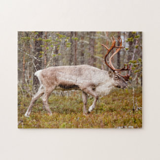 Reindeer walking in forest jigsaw puzzle