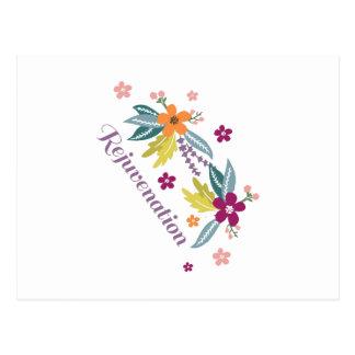 Rejuvenation Postcard