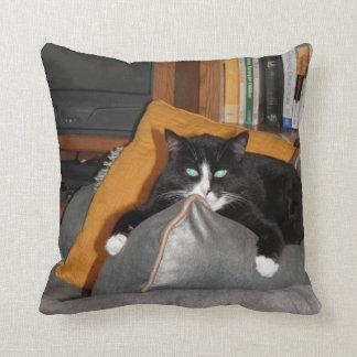 Relax  A Cat Cushion