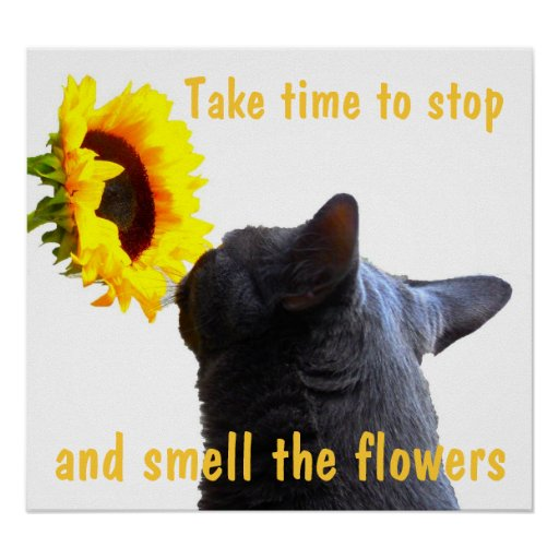 Relax and Smell the Flowers Print