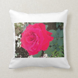 Relax by the rozz cushion