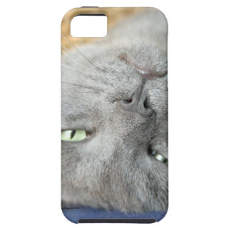 Relax! Grey Purring Cat iPhone SE/5/5S Case