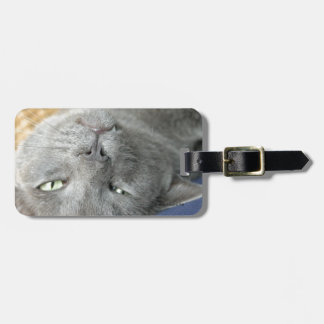 Relax! Grey Purring Cat Luggage Tag