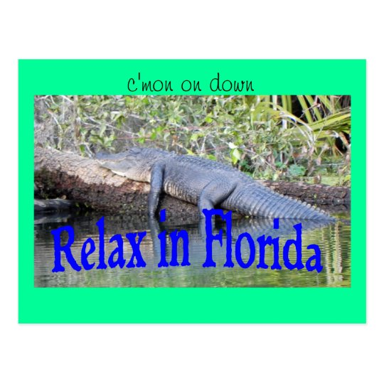Relax in Florida Postcard