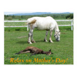 Relax on Mother's Day! Post Cards