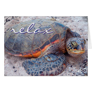 """Relax"" quote Hawaii sea turtle photo blank inside Card"