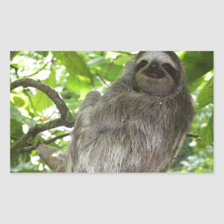 Relaxed Sloth in Nature Rectangular Sticker