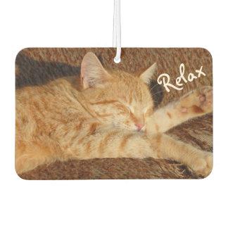 Relaxing Cat - Car Air Freshener