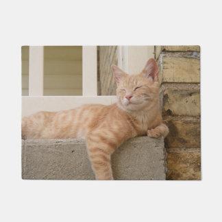 Relaxing Cat Doormat