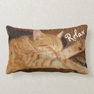 Relaxing Cat Lumbar Cushion