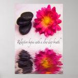 Relaxtion Begins Zen Stones And Dahlia Poster