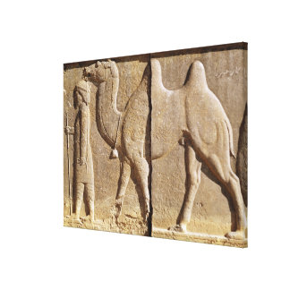 Relief from the front of the eastern stairway canvas print