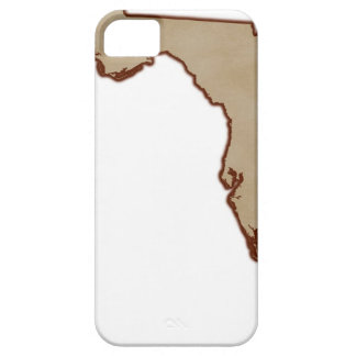 Relief Map of Florida Barely There iPhone 5 Case