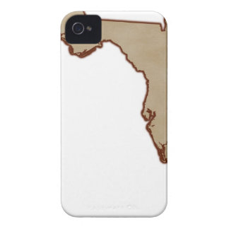 Relief Map of Florida iPhone 4 Case