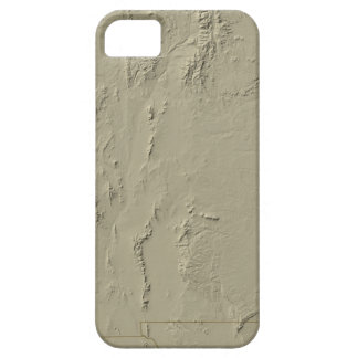 Relief Map of New Mexico iPhone 5 Cases