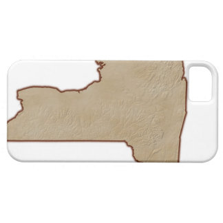 Relief Map of New York State iPhone 5 Cases