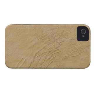Relief Map of Pennsylvania iPhone 4 Cases