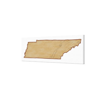 Relief Map of Tennessee Canvas Print