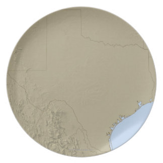 Relief Map of Texas 2 Plate
