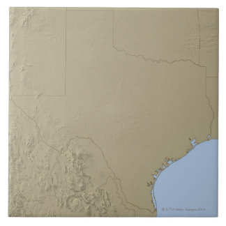 Relief Map of Texas 2 Tile
