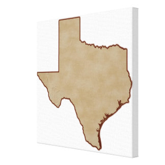 Relief Map of Texas Canvas Print