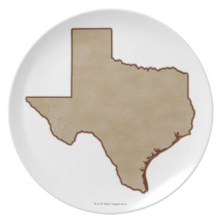 Relief Map of Texas Plate
