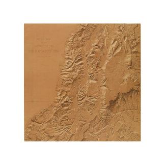 Relief map of Utah Wood Wall Art