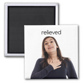 Relieved Refrigerator Magnet