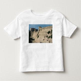 Remains of the fortress walls, built c.37-31 BC Toddler T-Shirt