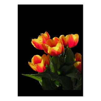 Rembrandt Tulips ATC Photo Card Business Card