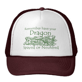 Remember have your Dragon Spayed or Neutered Mesh Hat