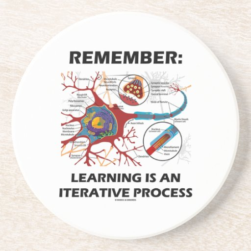 Remember: Learning Is An Iterative Process Synapse Coaster
