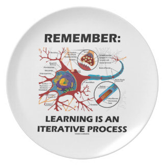 Remember: Learning Is An Iterative Process Synapse Dinner Plate