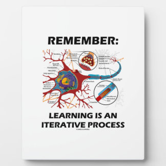 Remember: Learning Is An Iterative Process Synapse Plaques