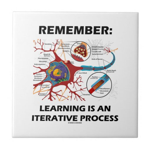 Remember: Learning Is An Iterative Process Synapse Tiles
