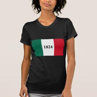 Remember the Alamo Texas State Flag Tshirts