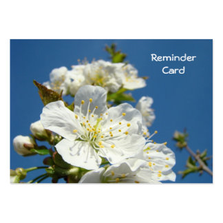 Reminder Cards Appointments Blue Sky Blossoms Large Business Cards (Pack Of 100)