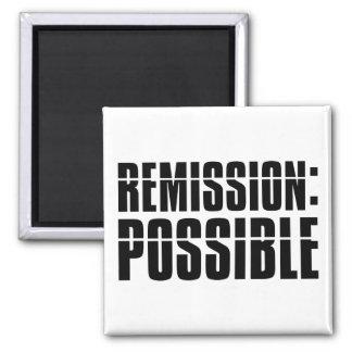 Remission Possible Magnet