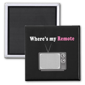 Remote Control Fridge Magnet
