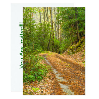 Remote Dirt Road Smoky Mountains Morning Picture 13 Cm X 18 Cm Invitation Card