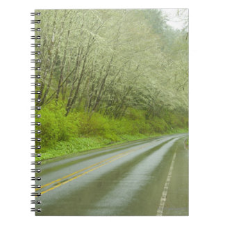 Remote highway through forest notebook