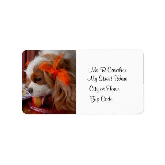 Renae Birthday Cavalier Spaniel Label Address Label