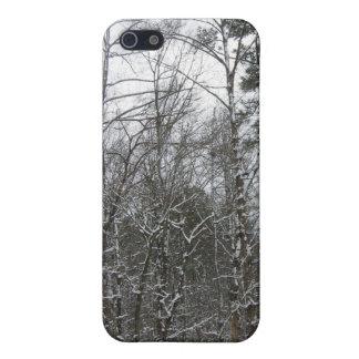 renewal iPhone 5 case