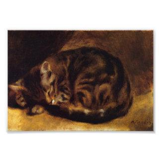 Renoir Sleeping Cat Print Photograph