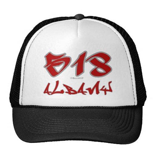 Rep Albany (518) Mesh Hats