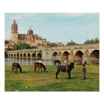 Replica Vintage Spain, Salamanca, Cathedral Posters