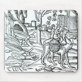 Representation of the Plague, 1572 Mouse Pad