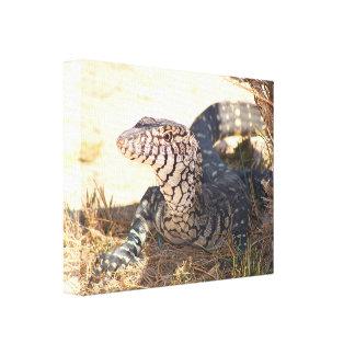 Reptile in the Desert, Australia Canvas Print