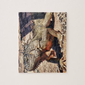 Reptile Jigsaw Puzzle